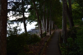 The boardwalk trail along the shore of Seal Rock, a peaceful place to take in the salty breezes