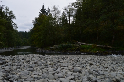Sol Duc River running behind our campsite at Klahowya Campground in Olympic National Forest
