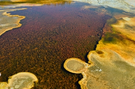 A colorful bacteria mat at Yellowstone National Park.