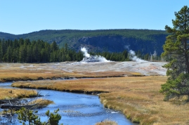 Castle Geyser from afar in the Upper Geyser Basin at Yellowstone National Park.