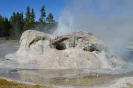 The Grotto Geyser at Upper Geyser Basin Yellowstone National Park