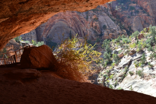 Getting out of the sun while hiking in Zion National Park