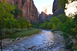 The begining of the Narrows Hike in Zion NP