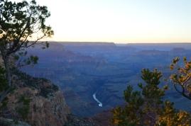 The Colorado River flowing through the Grand Canyon