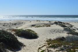 A sunny day at Pismo Beach, CA