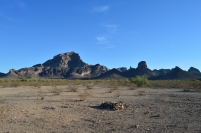 Our campsite at Saddle Mountain in Tonopah, AZ