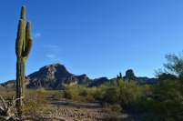 Saddle Mountain, Tonopah, AZ
