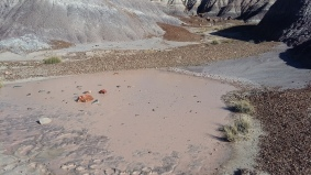 Even the mud is pretty in the Painted Desert National Park
