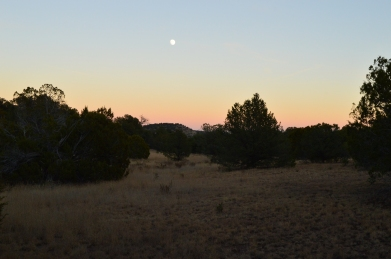 A moonlit sunset at at Datil Well Campground in New Mexico