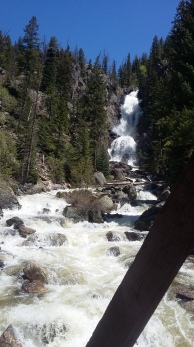 Fish Creek Falls roaring in the spring, Steamboat Springs, Colorado