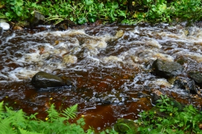The tea colored water of Munising Creek flowing along, Munising, MI
