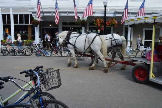 Beatiful strong horses pulling a carriage down Main Street, Mackinac Island, Michigan