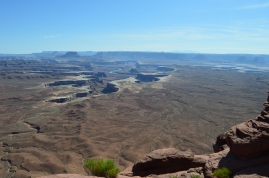 You can just make out the river flowing through the canyons below. Not sure if it's the Green River or the Colorado from this viewpoint. Canyonlands National Park